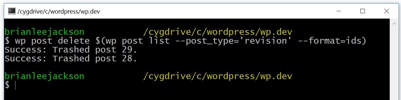 управление ревизиями wordpress через WP-CLI