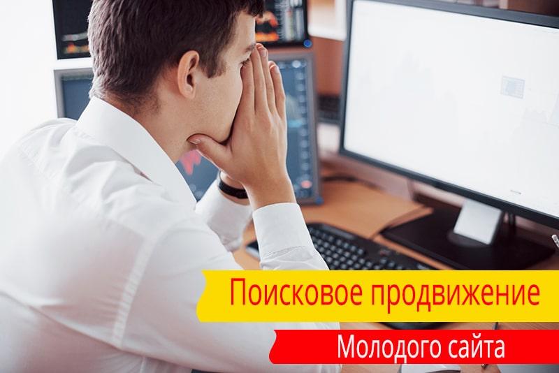 Поисковое продвижение молодого сайта